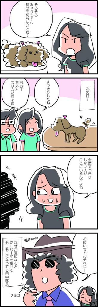 vol.48 みゅう毛刈り